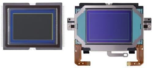 Canon EOS 1D X Sensor 750 500x224 Canon EOS 1D X   aus der Sicht eines Profifotografen