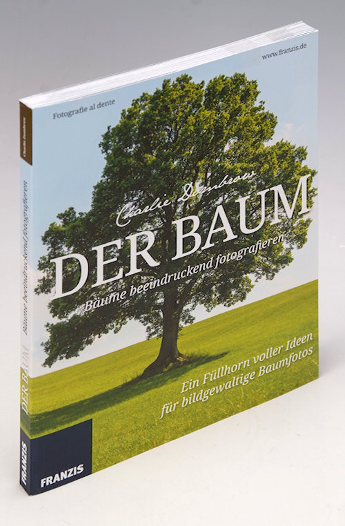 buchtipp charlie dombrow der baum b ume beeindruckend fotografieren. Black Bedroom Furniture Sets. Home Design Ideas