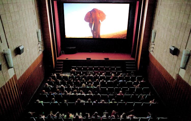 Kinoprogramm Ludwigsburg Central