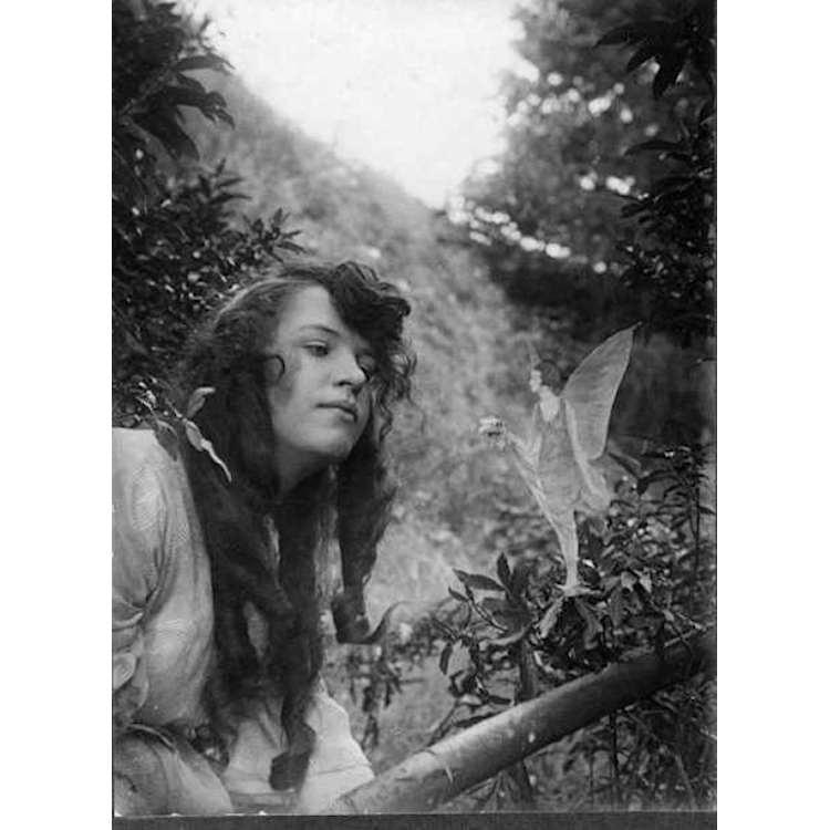 bilder der photographie ein album photographischer metaphern edition suhrkamp