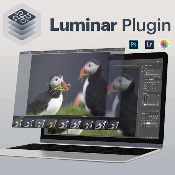 Skylum Luminar Flex: Ein Plug-in für effizentere Bildbearbeitung - fotointern.ch – Tagesaktuelle Fotonews