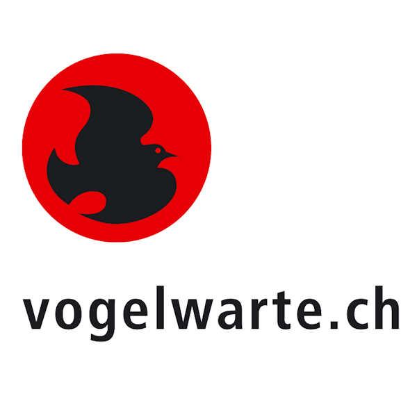 Faszination Vogelfotografie» – Fotowettbewerb der Schweizerischen ...