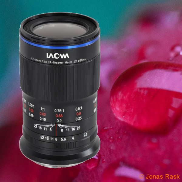 Laowa Makroobjektiv mit zweifacher Vergrösserung für APS-C Kameras - fotointern.ch – Tagesaktuelle Fotonews